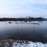Inondation février 2021